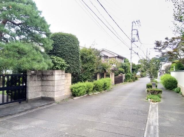 Bonsai Village, Omiya