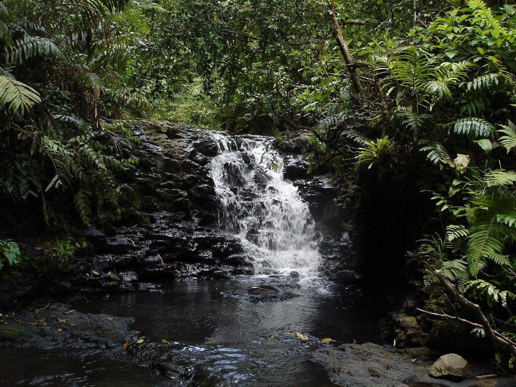 Cascate nei pressi di Iglesias Bay, Cocos Island