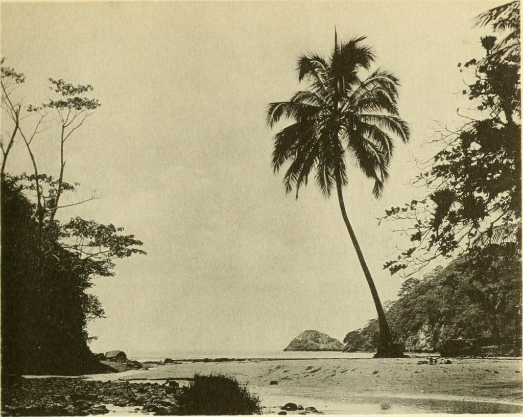 Wafer Bay, Cocos Island, Costa Rica