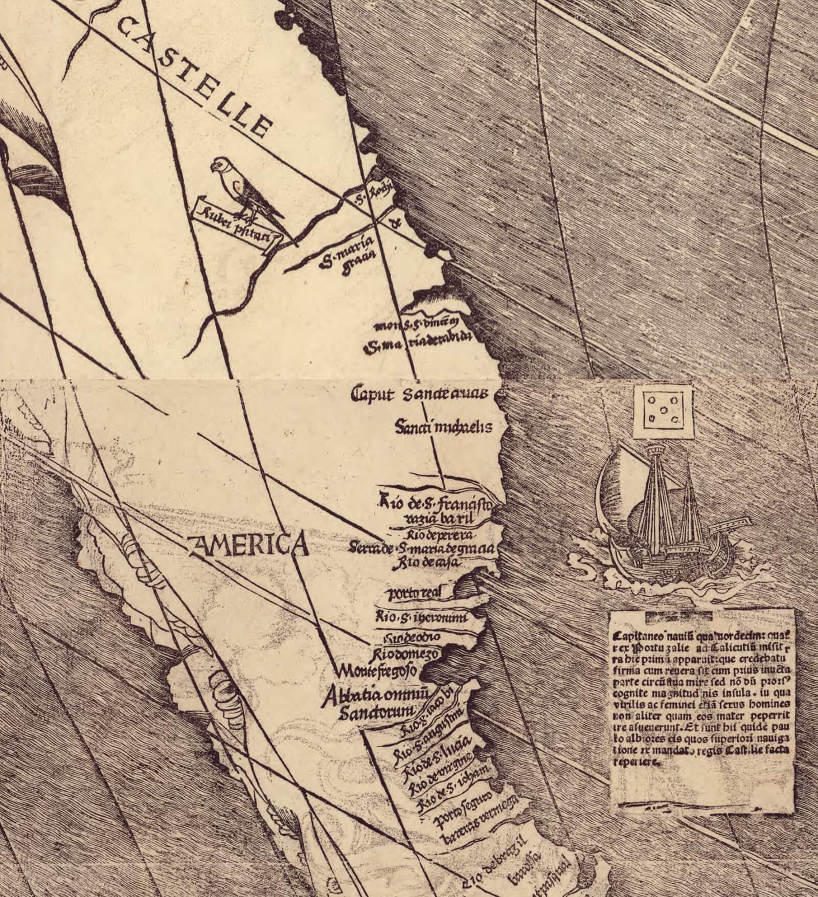 """Dettaglio della mappa di Waldseemüller che mostra il Sud America e la parola """"AMERICA"""""""