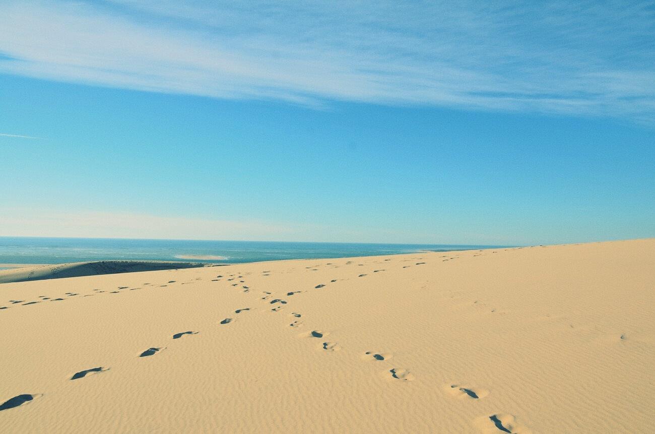 Incroci di orme sulla duna di Pilat
