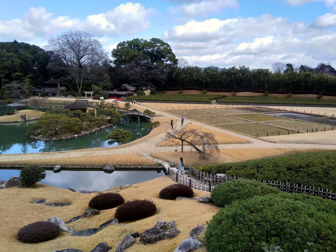 Vista dall'alto del Koraku-en. Sulla sinistra il giardino, sulla destra piccoli campi di riso e di tè