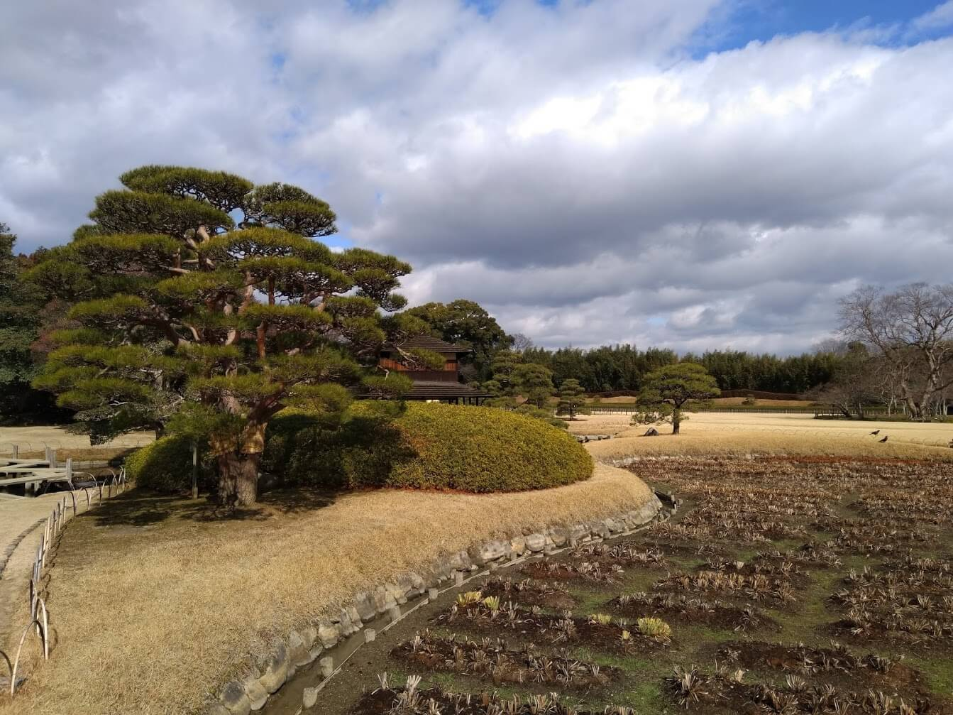 Scorcio del Koraku-en, giardino giapponese di Okayama