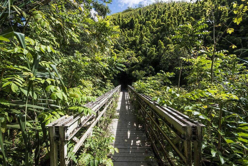 Il ponte che attraversa il torrente Palikea e immette nel bosco di bambù