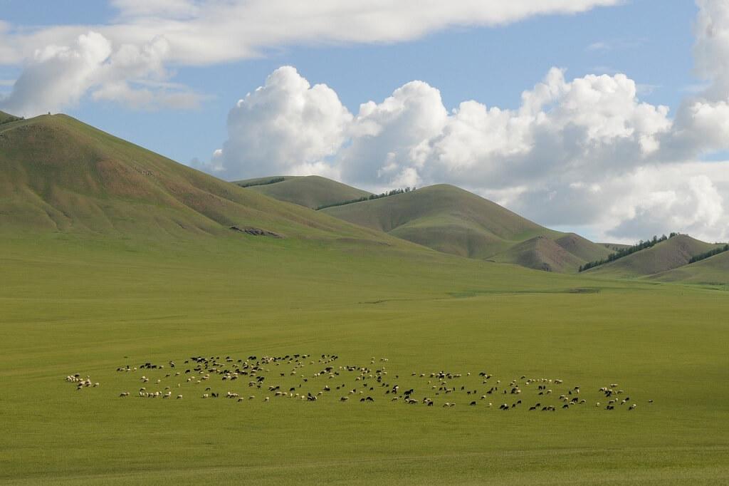 Libri sull'Asia centrale: un altopiano della Mongolia