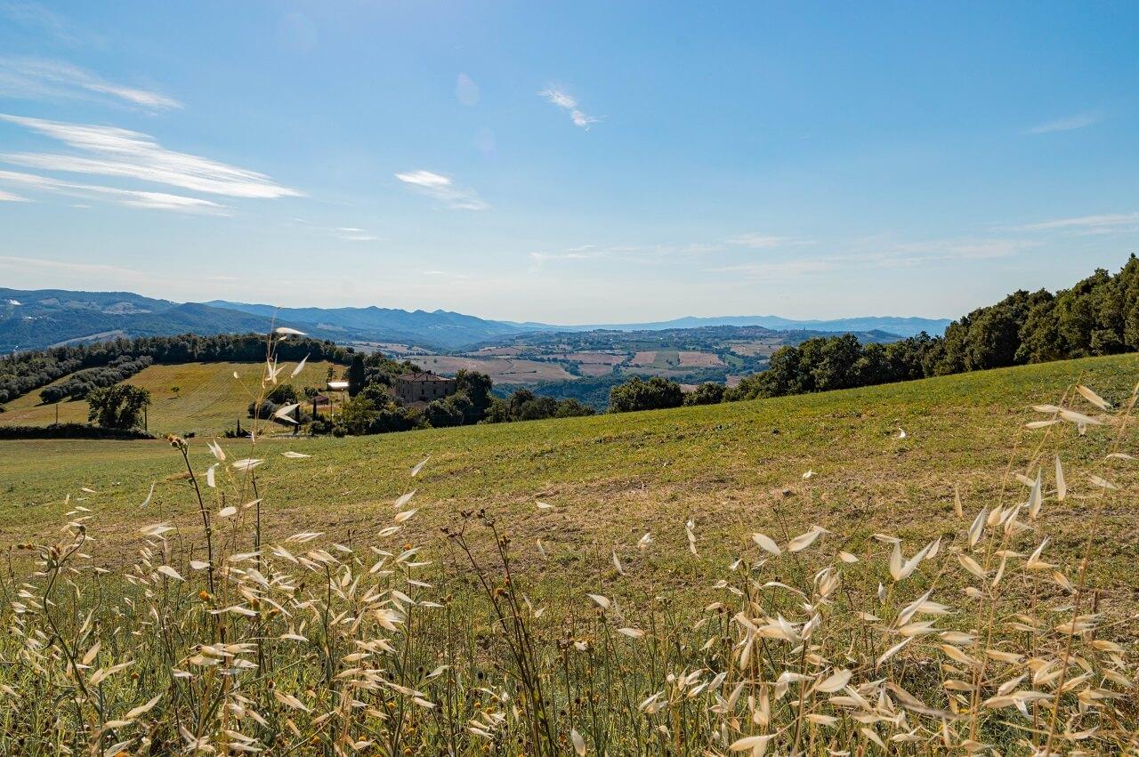 Veduta della Val di Cecina dal parcheggio di Rocca Sillana