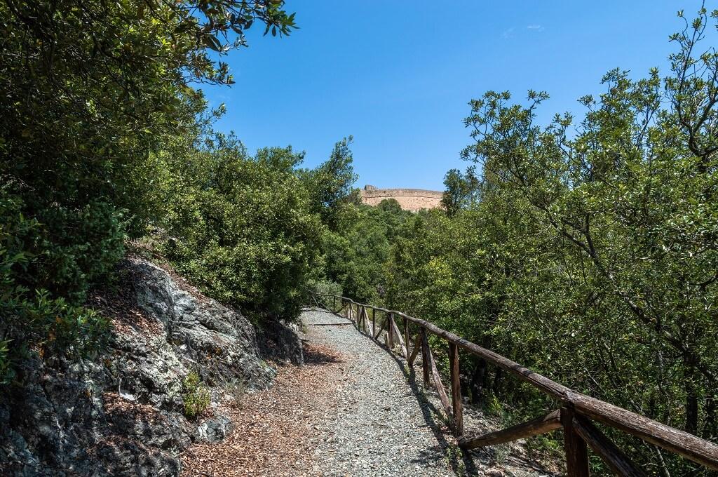 Sulla sinistra, le rocce verdi (ofioliti) che affiorano nei dintorni di Rocca Sillana