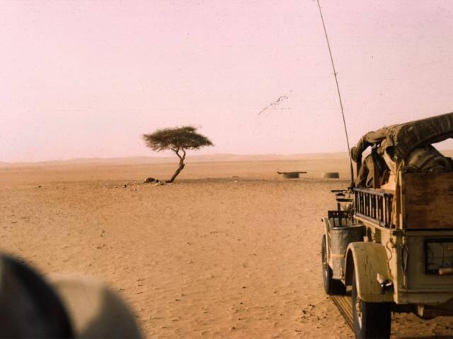 L'albero del Ténéré in una foto del 1961