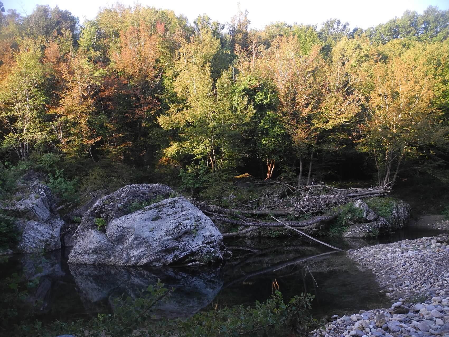 Il fiume Farma