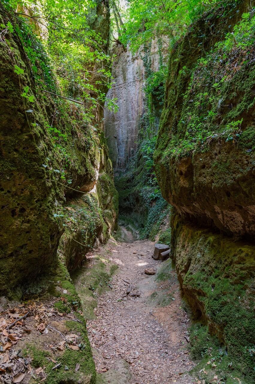 Via cava etrusca San Sebastiano, la più profonda