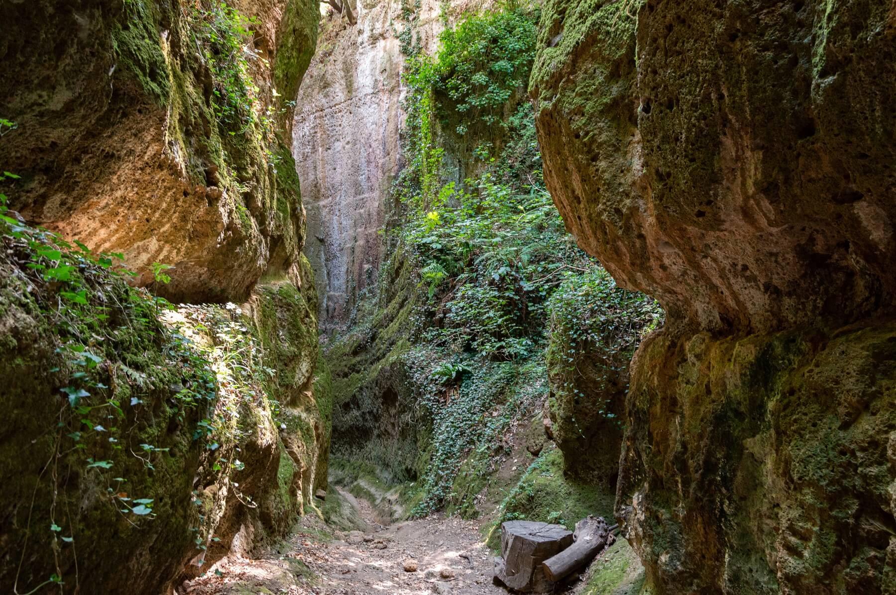 La via Cava di San Sebastiano, la più profonda tra le Vie Cave estrusche