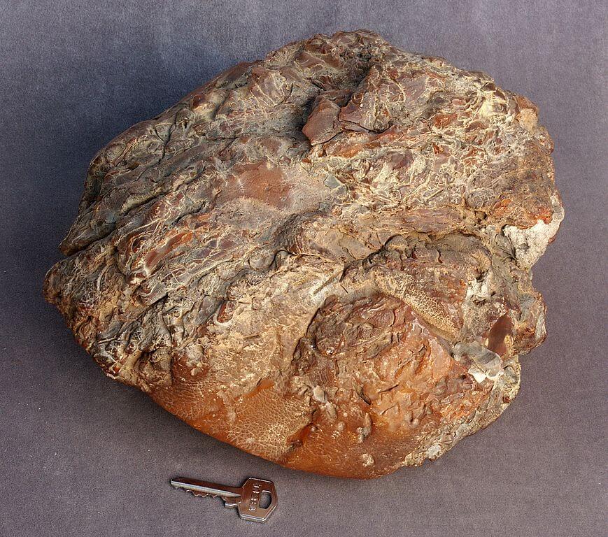 Campione di ambra del peso di 4,280 kg. Museo dell'Ambra di Kaliningrad