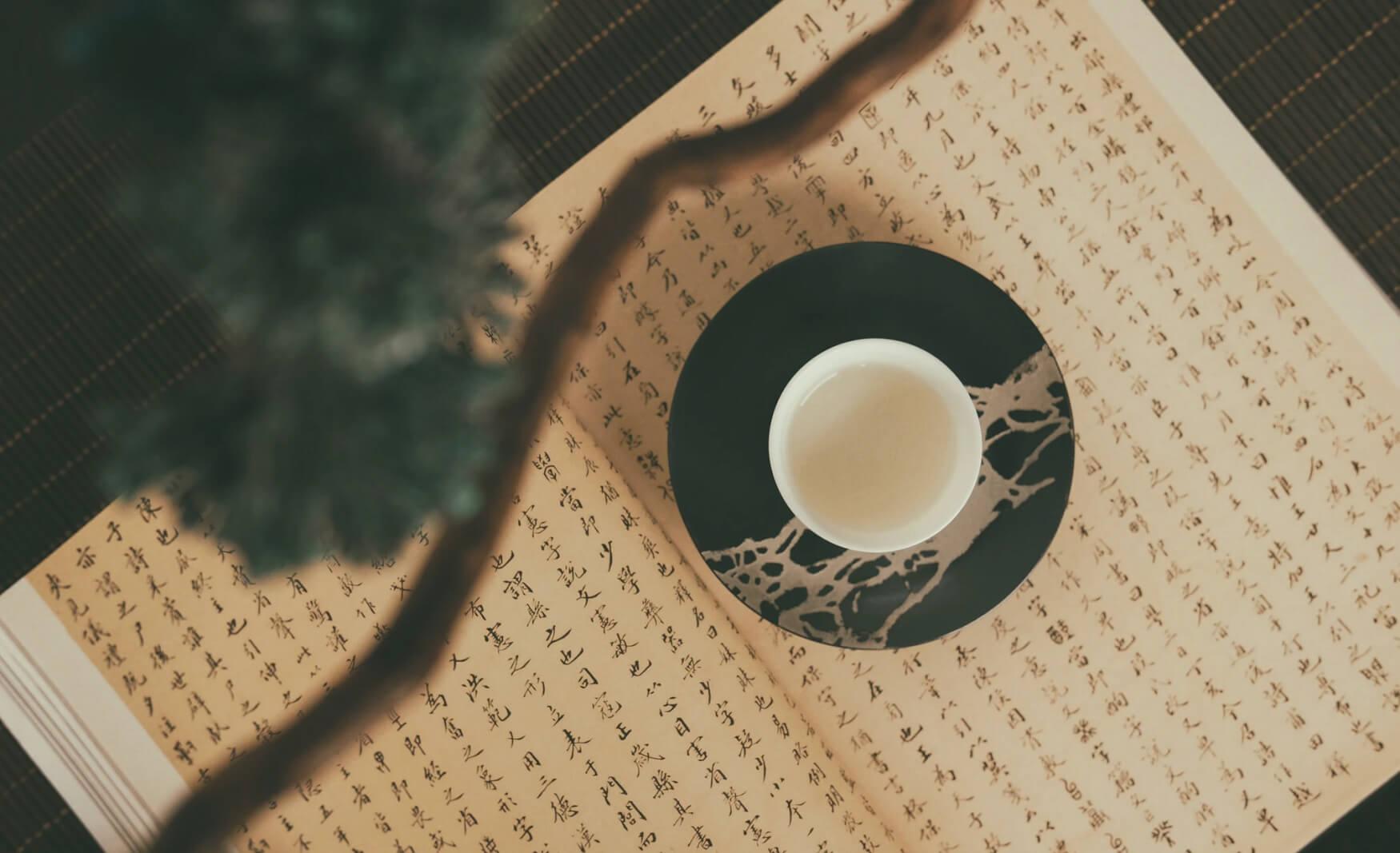 Libri sulla Cina, romanzi, saggi e narrativa cinese