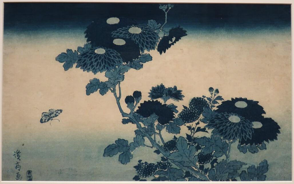 Farfalla e crisantemi, di Keisai Eisen. I cirsantemi sono protagonisti di una drammatica leggenda giapponese