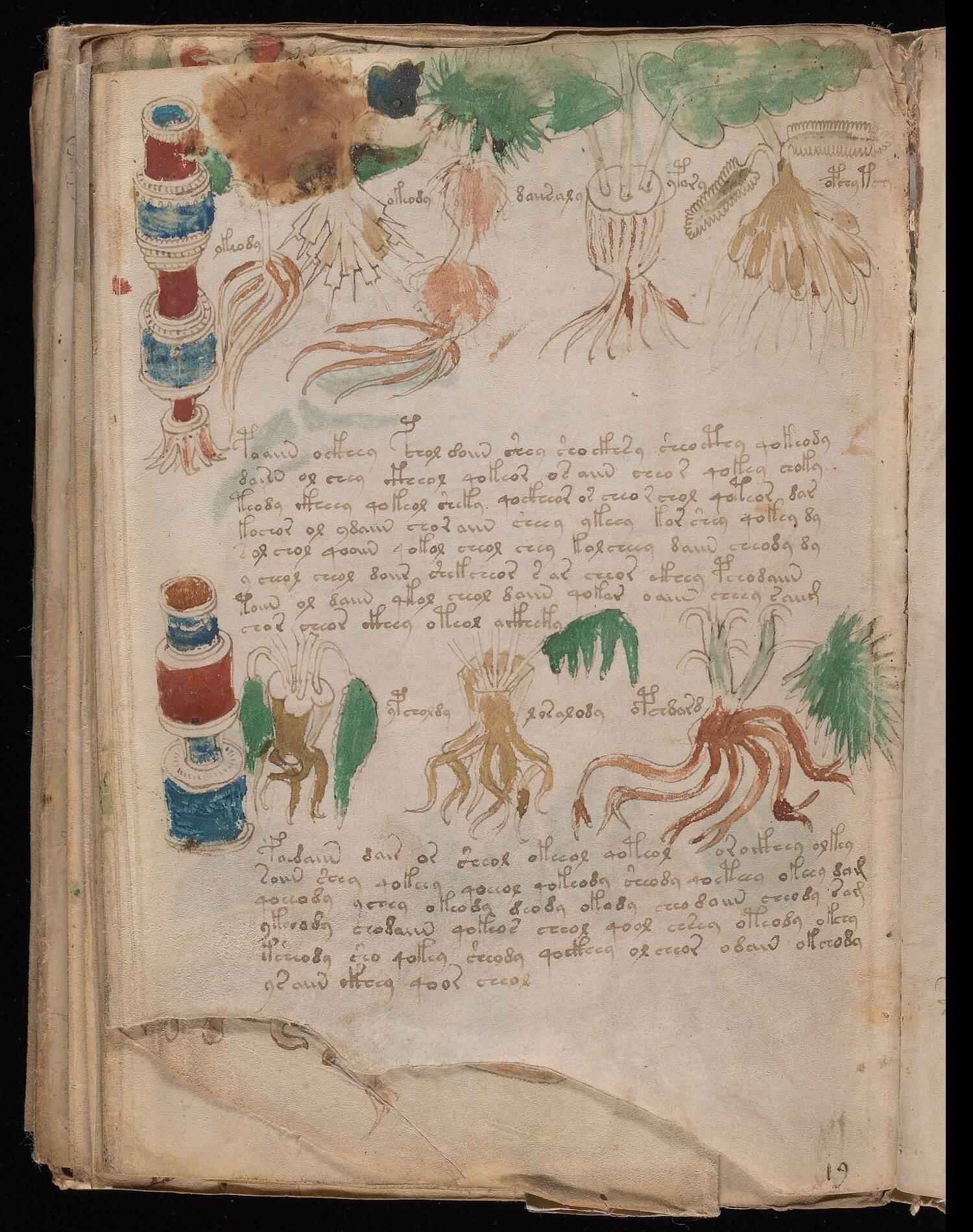 Foglio 102v, Yale University Library