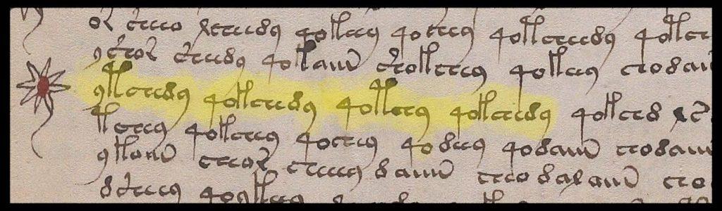 Manoscritto Voynich: particolare del foglio 107v con parole ripetute