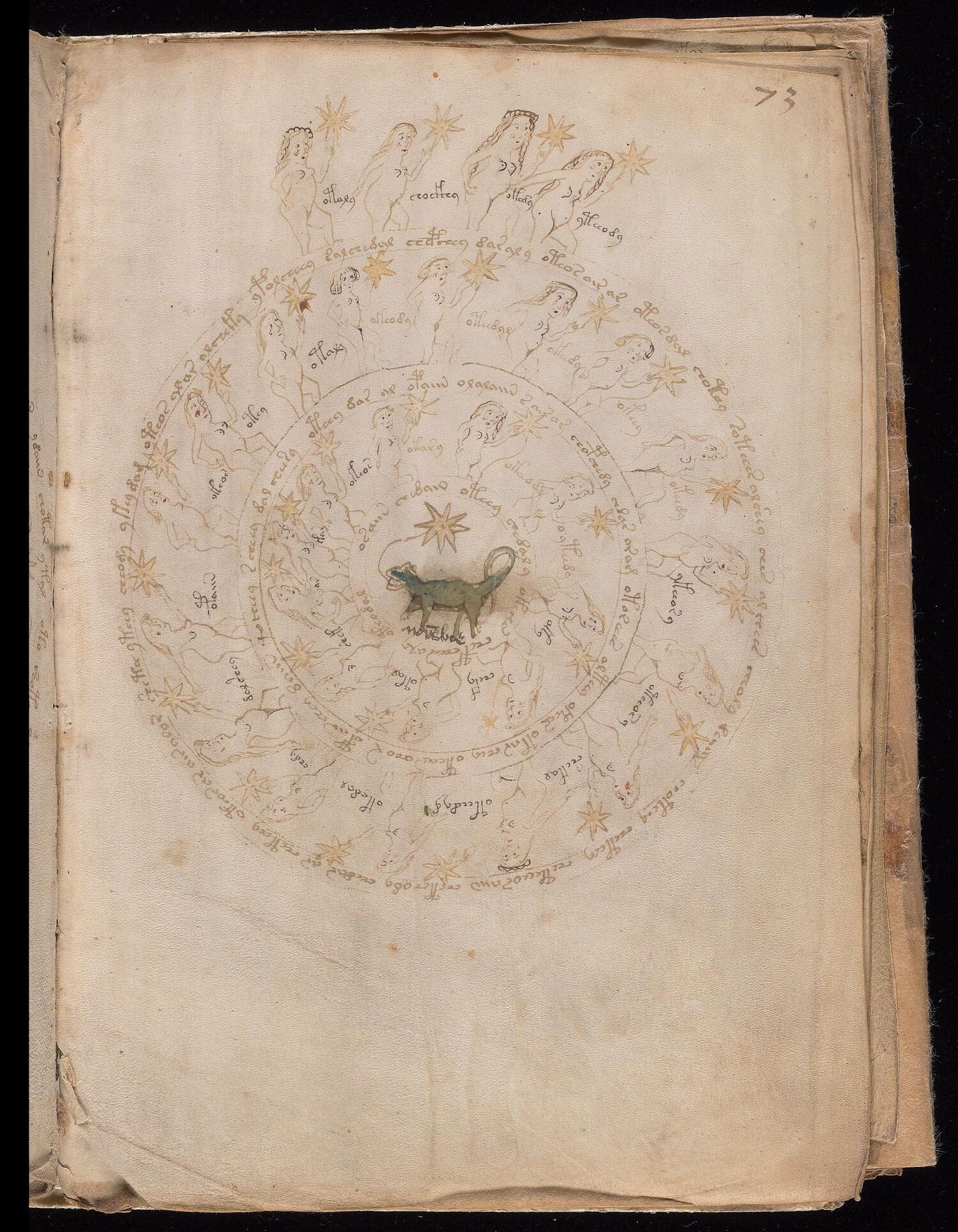 Foglio 73r del manoscritto Voynich, Yale University Library
