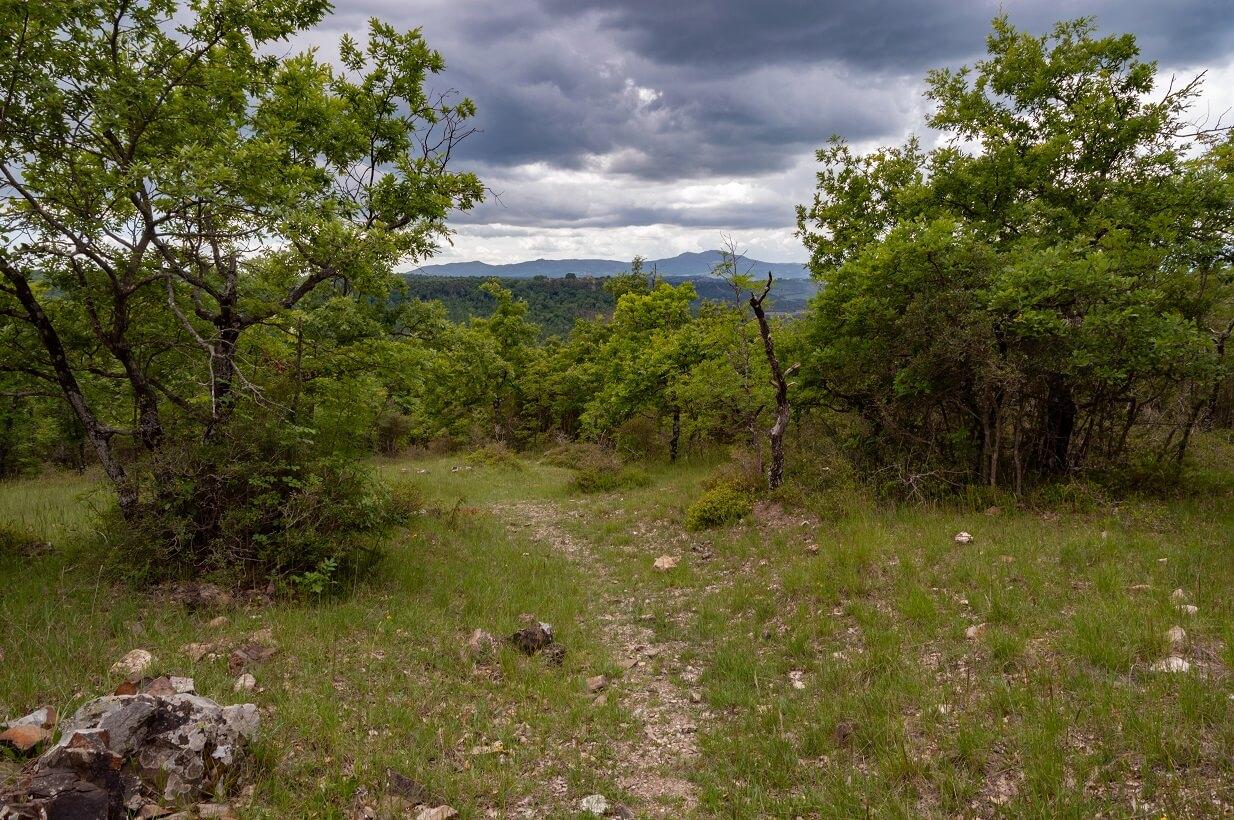 Un tratto del sentiero La Scialimata, nei dintorni di Torre Alfina