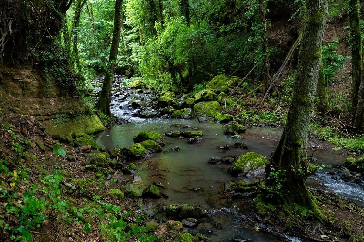 Il torrente Subissone, cupo e selvaggio