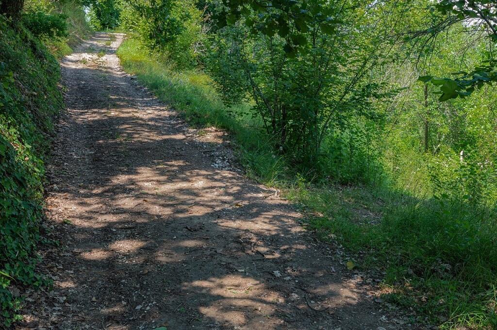 Sulla destra il sentiero verso il Sasso del Predicatore