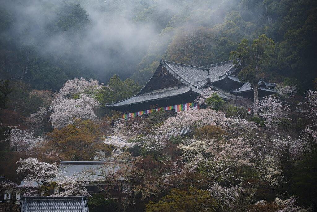 Il tempio Hasedera di Kamakura